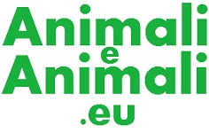 AnimalieAnimali.eu – Portale Animali