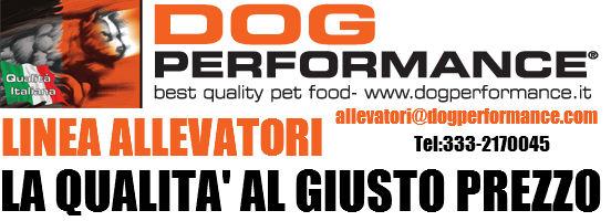 mangime per allevatori di cani