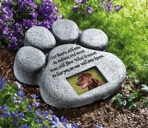 cani-cimitero